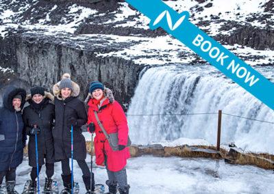 Dettifoss waterfall day tour
