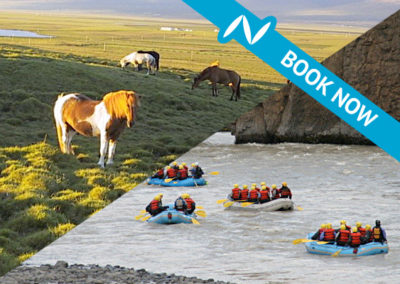 Horseback riding and River rafting