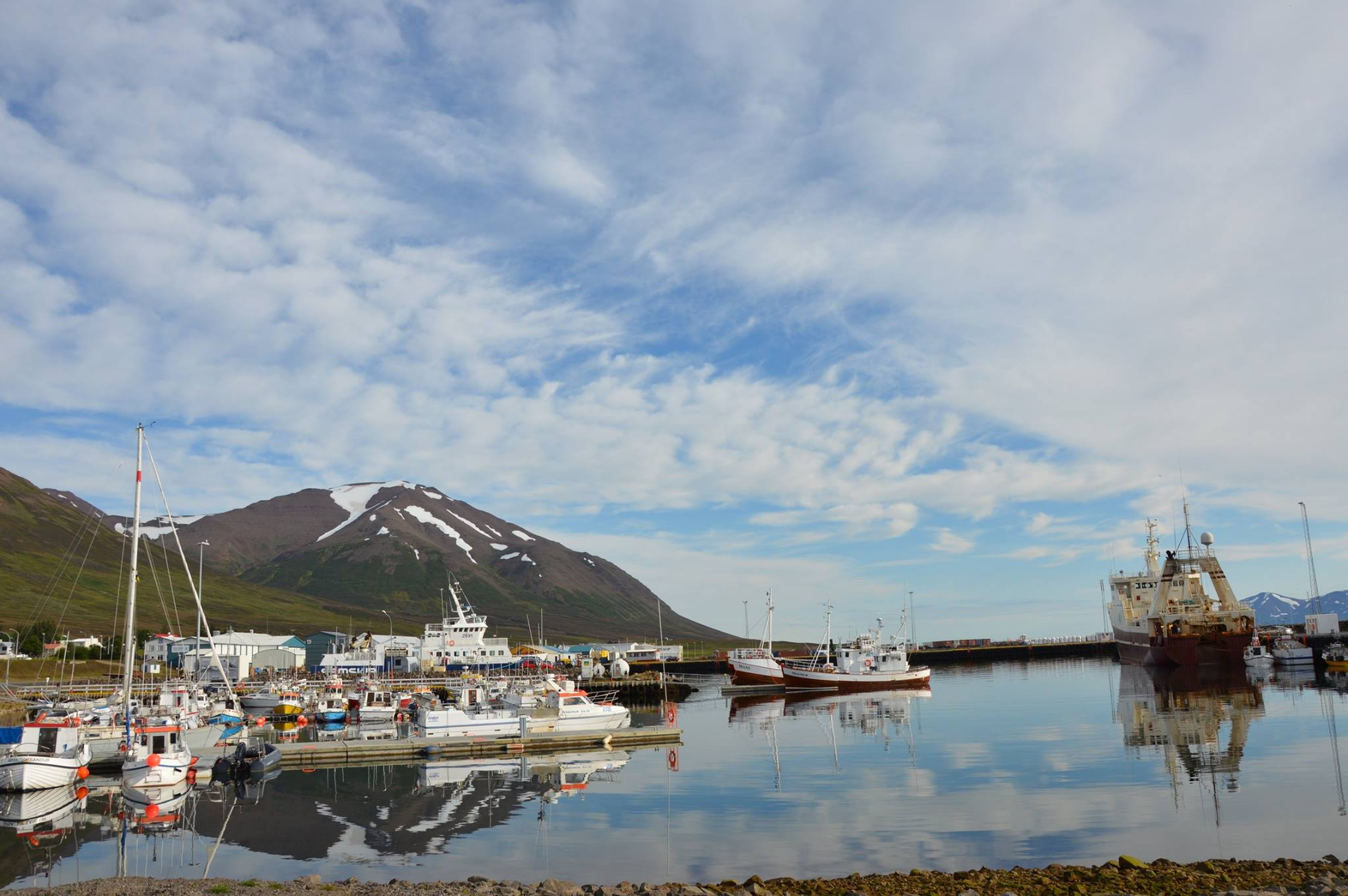 Dalvik harbor tours North Iceland